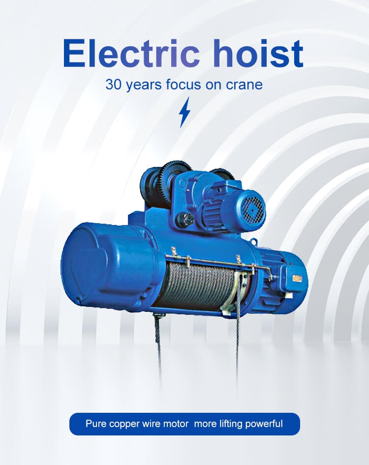 hot selling general use electric wire rope hoist 6